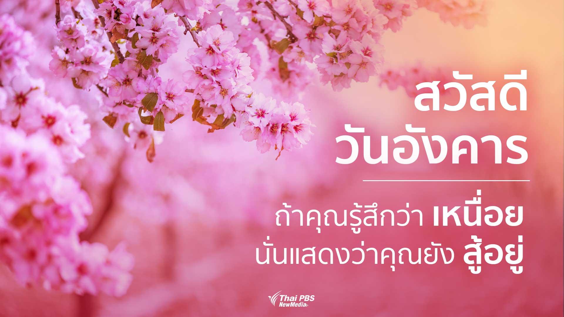 ข้อคิดในการใช้ชีวิต - Thai PBS สวัสดีทุกสีวัน